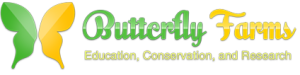 ButterflyFarms